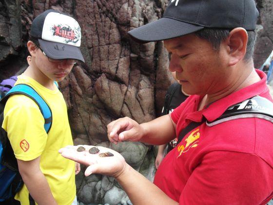 辦理環境教育主題活動-濱海生物與海蝕地形  照片
